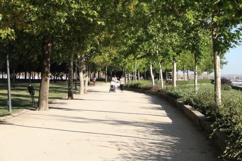 Es una delicia pasear en un día soleado por este parque