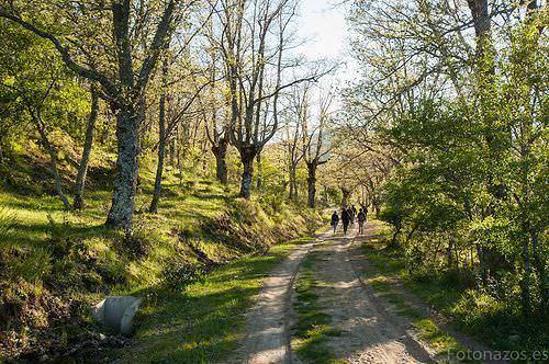 rutas para pasear por madrid