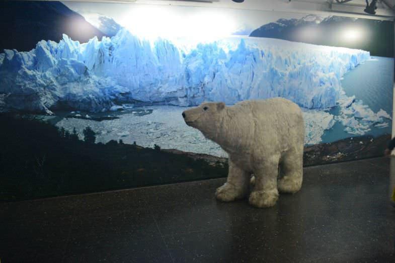 Museo y showroom del Ice Bar