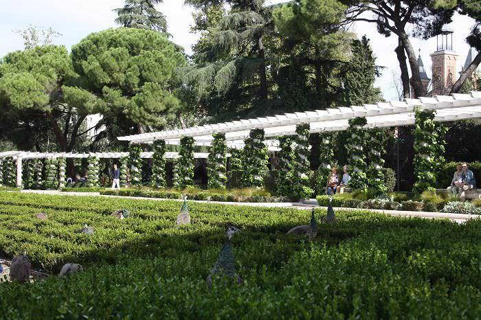 pavo real en el jardin de cecilio rodriguez