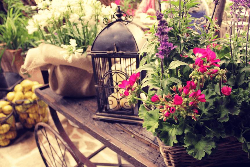 El jard n secreto de salvador bachiller madrid for El jardin secreto madrid precios