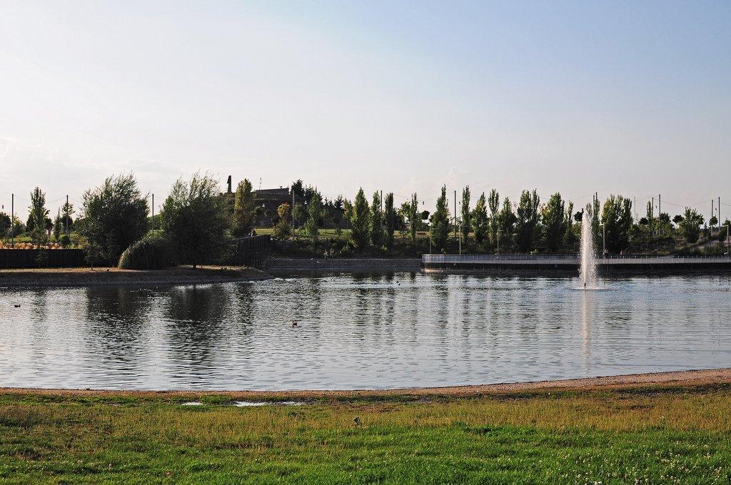 Parque Forestal de Valdebernardo