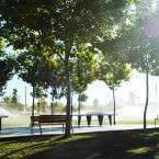 Parque Forestal de Valdebernardo - Un buen día en Madrid
