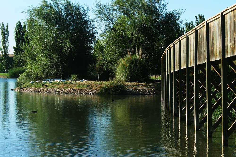 parque valdebernardo 6