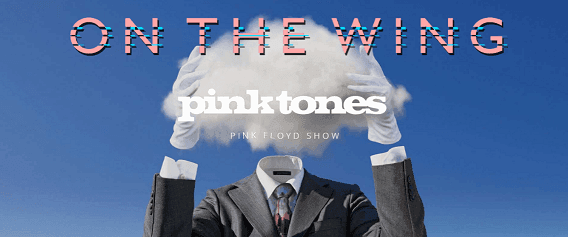 PinkTonesOnTheWingTour