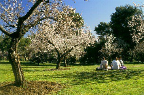 Picnic en el parque de la Quinta de los Molinos