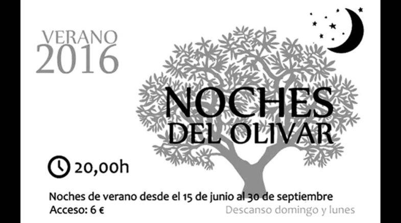 Cartel las Noches del Olivar en el Olivar de Castillejo