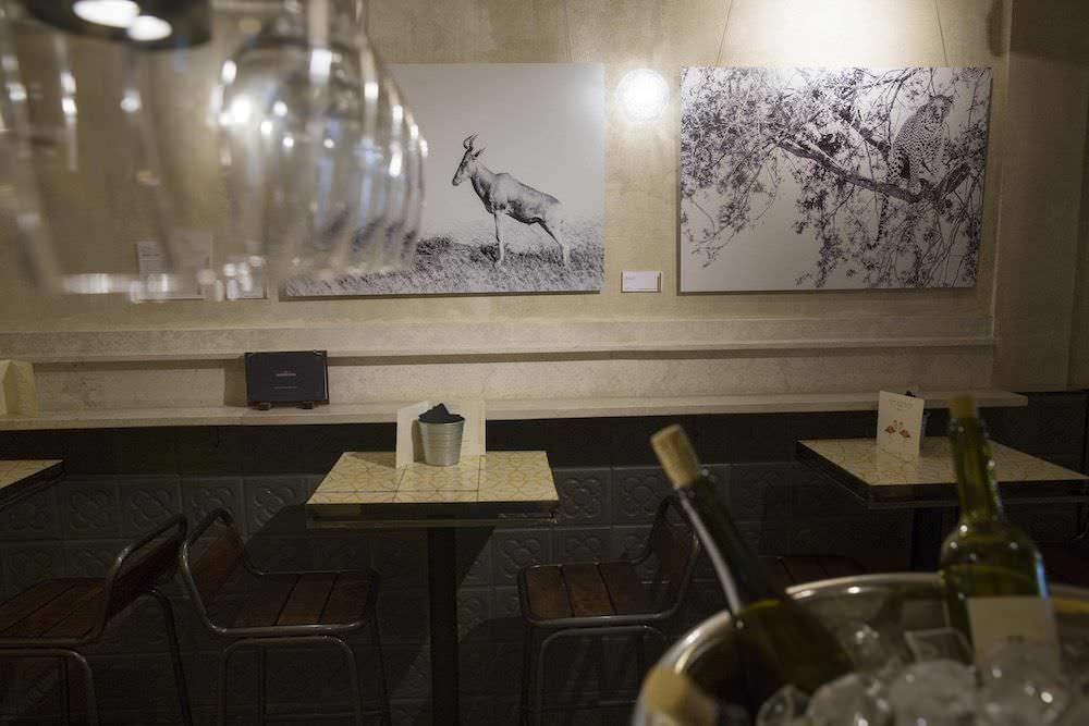 Exposición De Fotografía Kudu En Casa De Fieras Un Buen