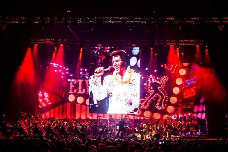 La gira mundial de Elvis llega a Madrid - Un buen día en Madrid