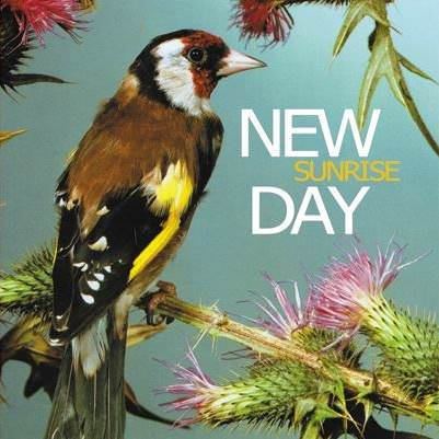¨Sunrise¨ es el primer disco de New Day