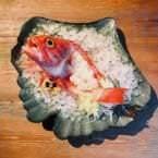 Sashimi de cabracho en su carcasa en Kirikata