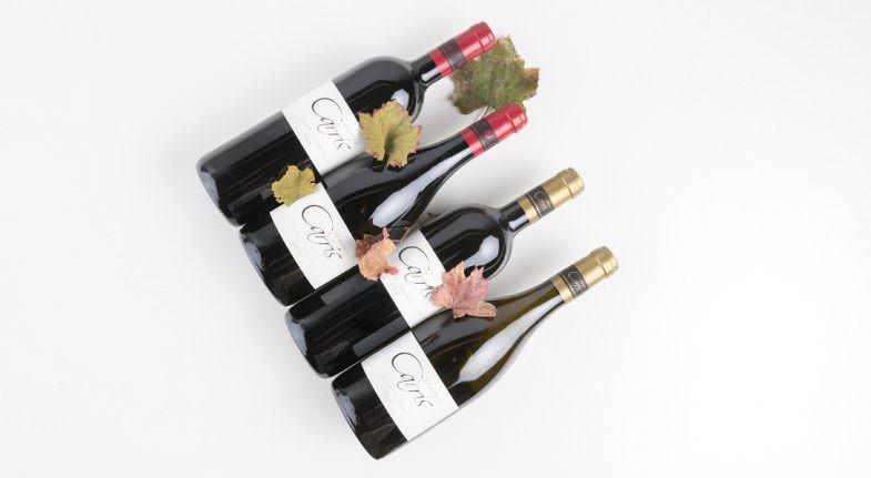 Socalcos da Carrís, un vino para acertar seguro - Un buen día en Madrid