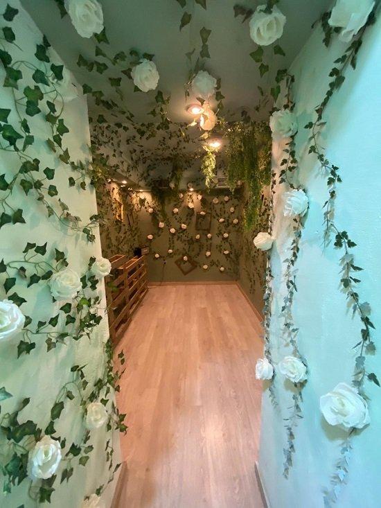 salón de rosas madscool